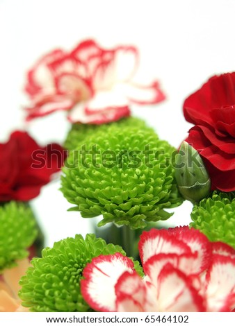 Green Flower next to carnations - stock photo