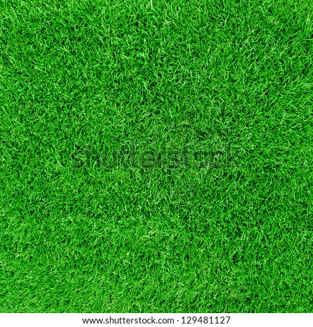 Green football field grass - stock photo