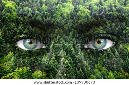 Green forest and human eyes - Save nature concept - stock photo