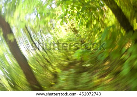 Green forest, radial blur background - stock photo