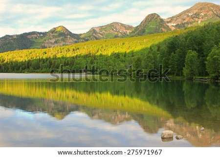 Green forest reflection in a mountain lake, Utah, USA. - stock photo