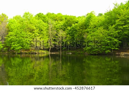 Green forest reflection on water. A lake in Catalonia (Spain) - stock photo