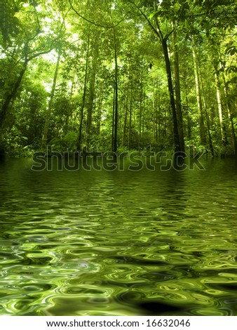 Green forest with ray of light by river - stock photo