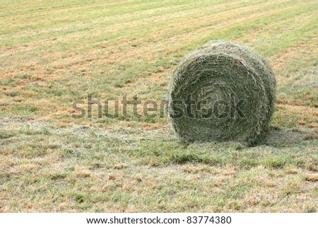green fresh hay bale, aveyron, south of france, europe - stock photo