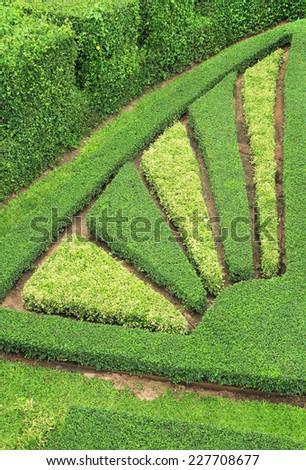 Green garden - stock photo