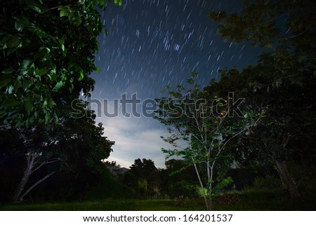 Green garden with trees at night with star trails in the sky - stock photo