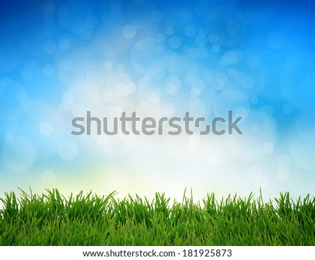 Green grass  abstract summer background - stock photo