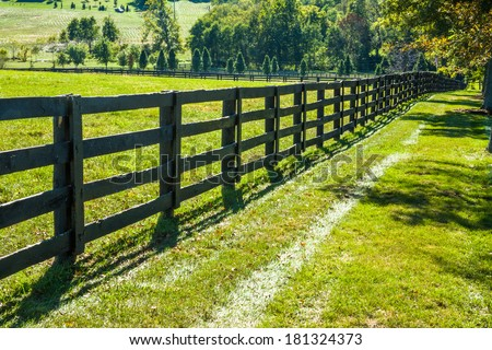 Green Grass Along A Fence Line And Pasture During Autumn In Horse Country, Lexington, Kentucky, USA - stock photo