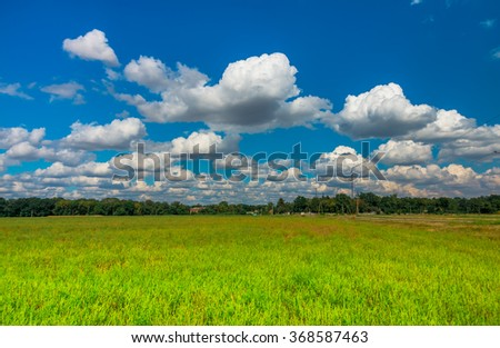 green grass and clouds in a field - stock photo