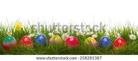 Green grass and colorful easter eggs.Easter  background. - stock photo