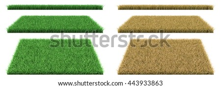 green grass and dry grass. 3D illustration,  - stock photo