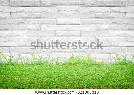 Green grass and white wall background - stock photo