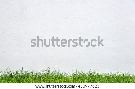 Green Grass and White Wall Background. - stock photo