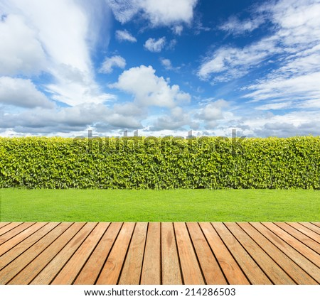 Green grass and wooden floor  on hedge with cloudy sky background. - stock photo