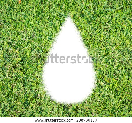 Green grass ecological drop water concept on over white background - stock photo