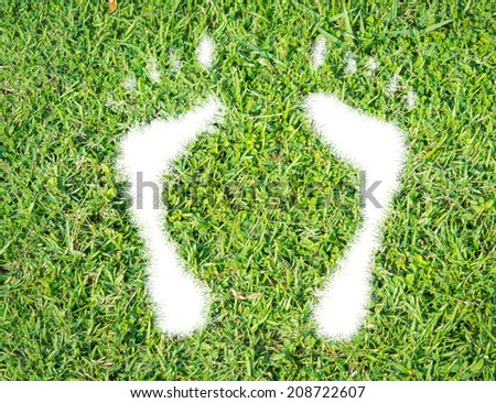 Green grass ecological footprint concept on over white background - stock photo