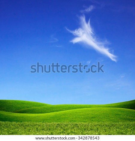 Green grass field and blue sky. - stock photo