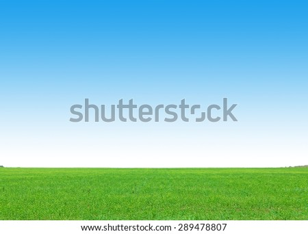 Green grass field and clear blue sky background - stock photo