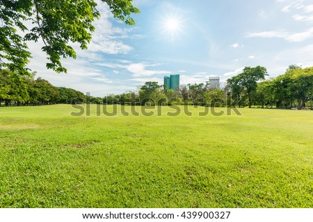 Green grass field in park at city center with blue sky and sun reflection - stock photo