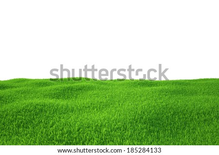 Green grass field. nature background. Empty Grass Field. - stock photo