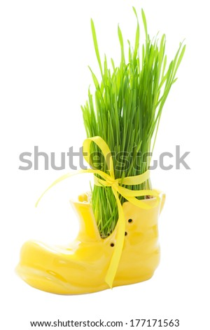 Green grass in a yellow shoe tied with a ribbon isolated on white  - stock photo