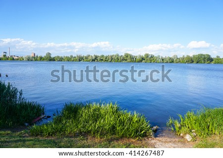 Green grass in front of a lake with forest in the background - stock photo