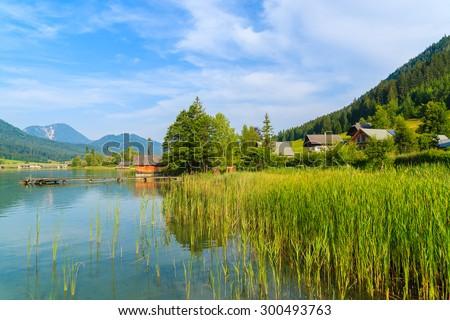 Green grass in water of Weissensee alpine lake in summer landscape, Austria - stock photo