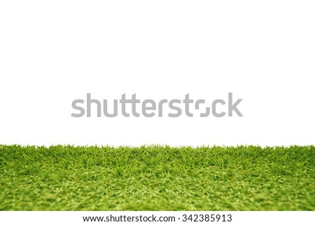 Green grass isolated on white background. - stock photo