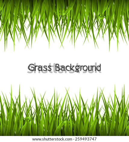 Green grass like frame isolated on white. Floral eco nature background - stock photo
