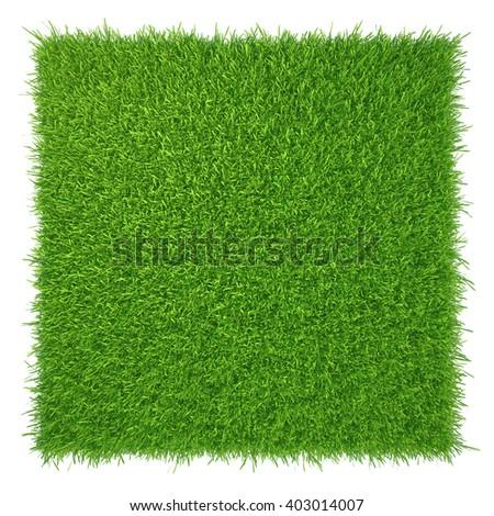 Green grass. natural background texture. fresh spring green grass - stock photo