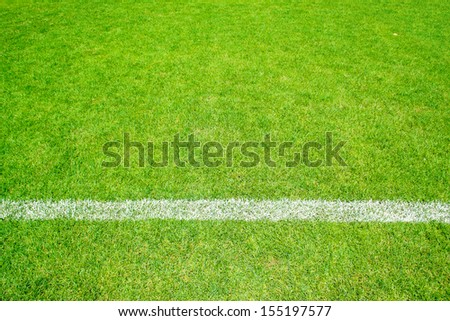 green grass of football sport field with white line for background - stock photo