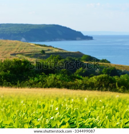 Green grass on a background of mountains and sky - stock photo
