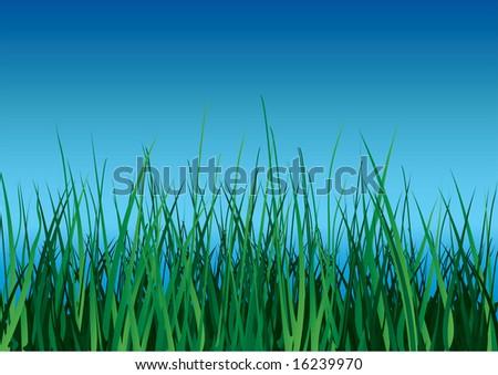 Green grass on blue sky background. Raster illustration. - stock photo