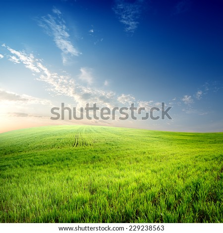 Green grass on field and clouds on sky - stock photo