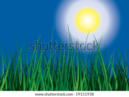 Green grass on sun sky background. Raster illustration. - stock photo