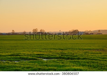 green grass on the field near the cottages - stock photo