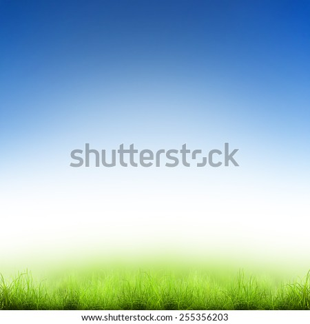Green grass over a blue sky. Beauty natural background - stock photo