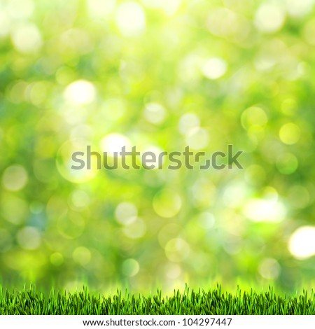 Green grass over abstract summer backgrounds with beauty bokeh - stock photo