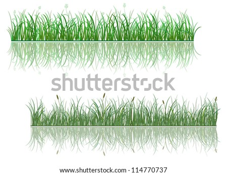 Green grass patterns with reflections for environment or ecology design. Vector version also available in gallery - stock photo