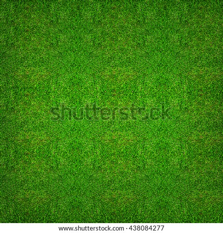 Green grass texture background for soccer sport or football sport and golf sport. - stock photo