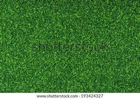 Green grass turf texture background - stock photo