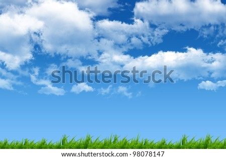 Green grass with beautiful blue sky - stock photo