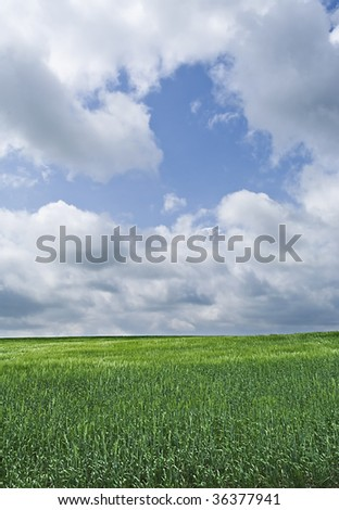 Green grassland with cloudy sky - stock photo