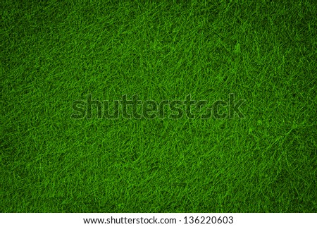 green hairy grass texture or background - stock photo