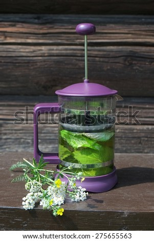 green herbal tea in a french press, outdoor drink - stock photo