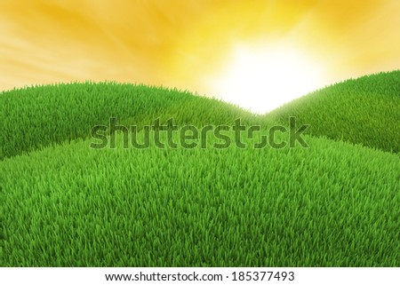 Green hill of grass at sunset - stock photo