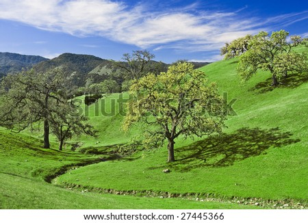 Green hills and oak trees in California wine country. - stock photo