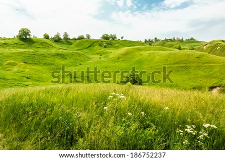 Green hills and wild flowers in the beginning of summer - stock photo