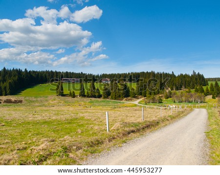 Green hilly rural landscape with country road, meadows and forest on sunny day and blue sky with white clouds, Horska Kvilda, Bohemian Forest, Sumava National Park, Czech Republic - stock photo
