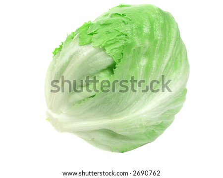 green iceberg lettuce on pure white background - stock photo